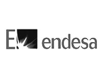 endesa-logo4